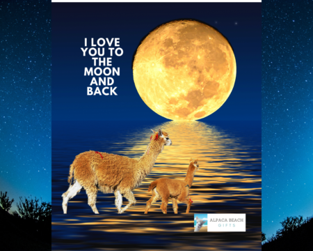I love you to the moon and back alpaca beach gift blanket on stars