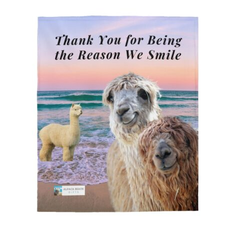 Thank you for being the reason we smile alpaca grandparents to grandson gift