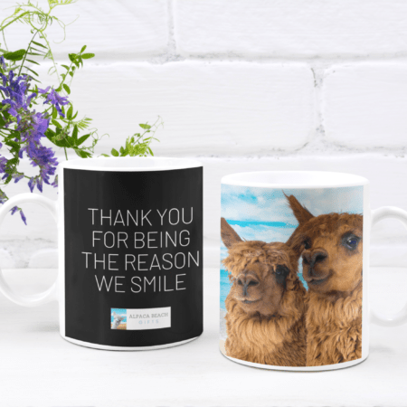 Thank you for being the reason we smile alpaca gift mugs