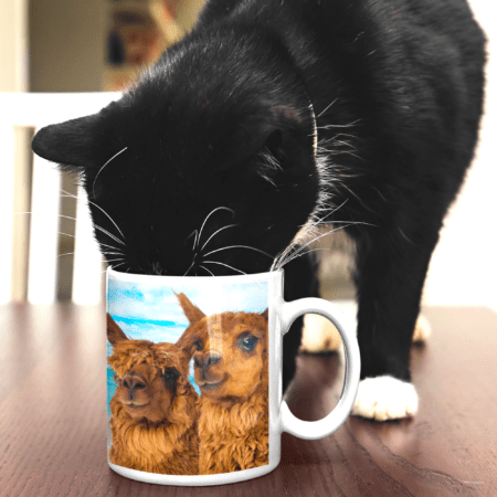 Thank you for being the reason we smile alpaca gift mug cat drinking