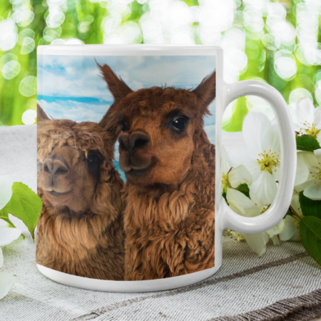 Thank you for being the reason we smile alpaca gift mug proud parents