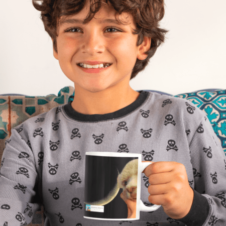I adore you. You are my sunshine. Alpaca Beach Gifts loving gift to child. smiling boy with mug with alpaca on it